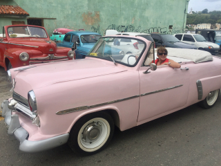 Cub joelle pink 1952 Ford - 1