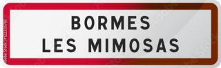 Bormes sign - 1