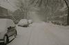 Snow3_3